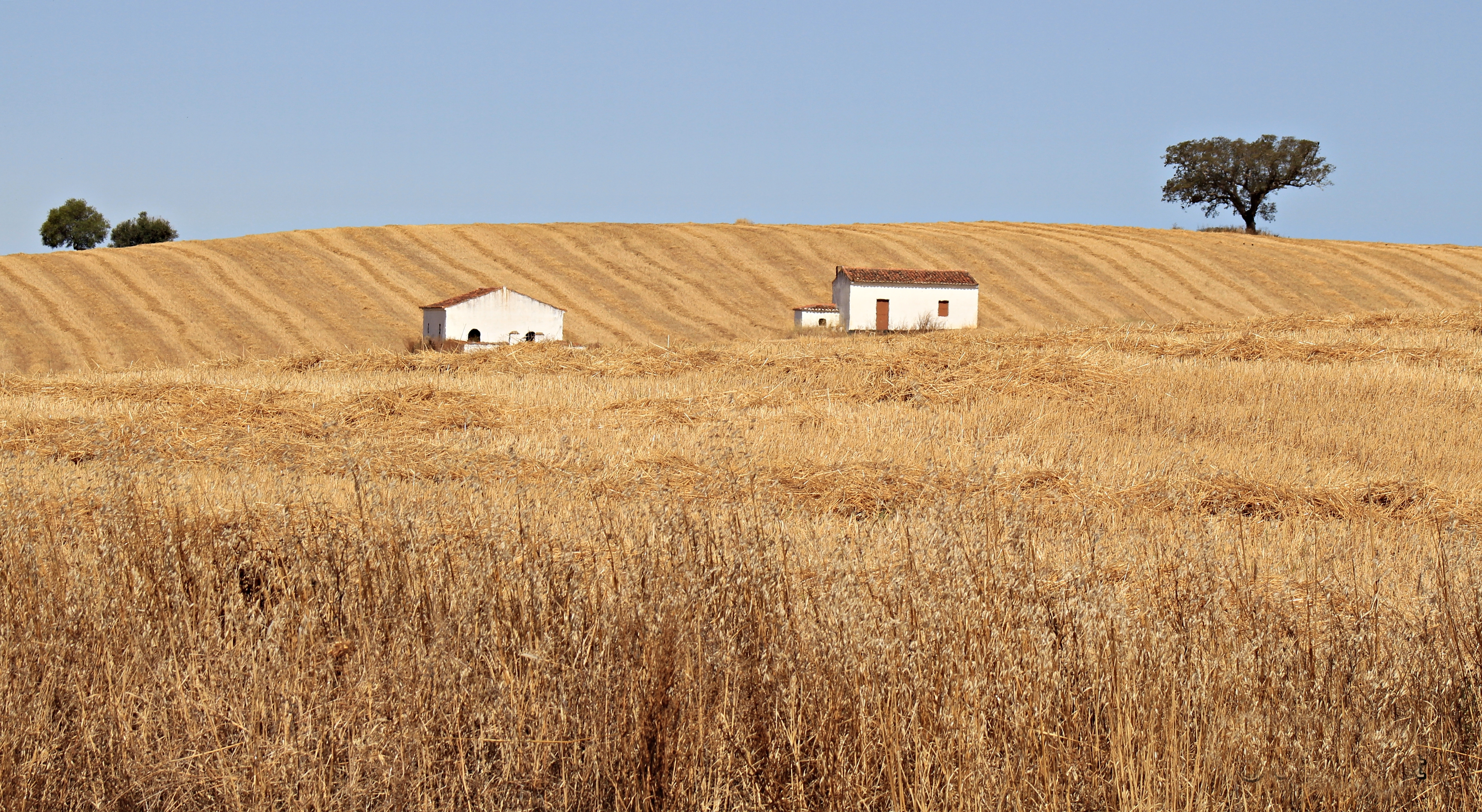 The Alentejo countryside